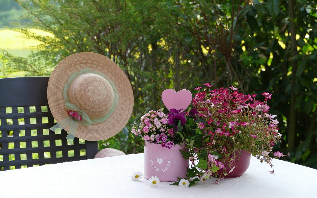 Flower pots on the table and a hat on the chair, provence accommodation, Hôtel de L'Image.