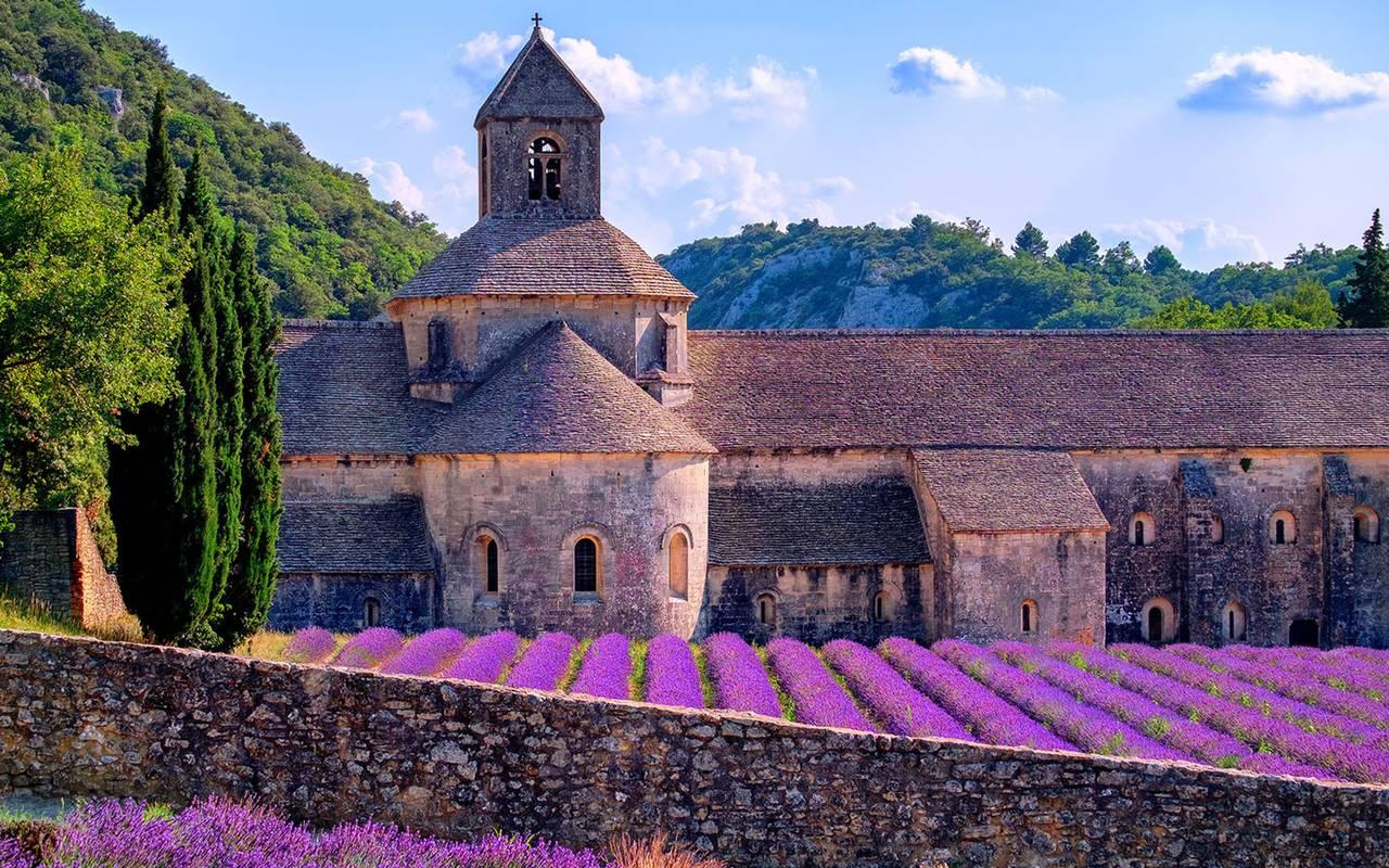 Landscape of provence with lavender, luxury stay in provence saint remy de provence, Le Vallon de Valrugues & Spa.