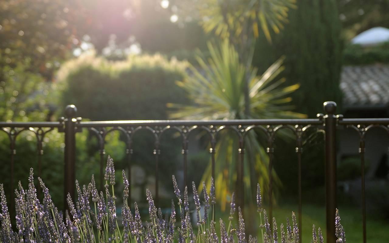 Balcon vue sur le jardin vallon de valrugues