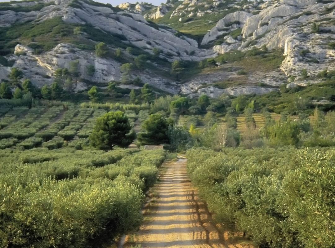 Balade vue sur les montagnes, hôtel 5 étoiles saint remy de provence, Le Vallon de Valrugues & Spa.